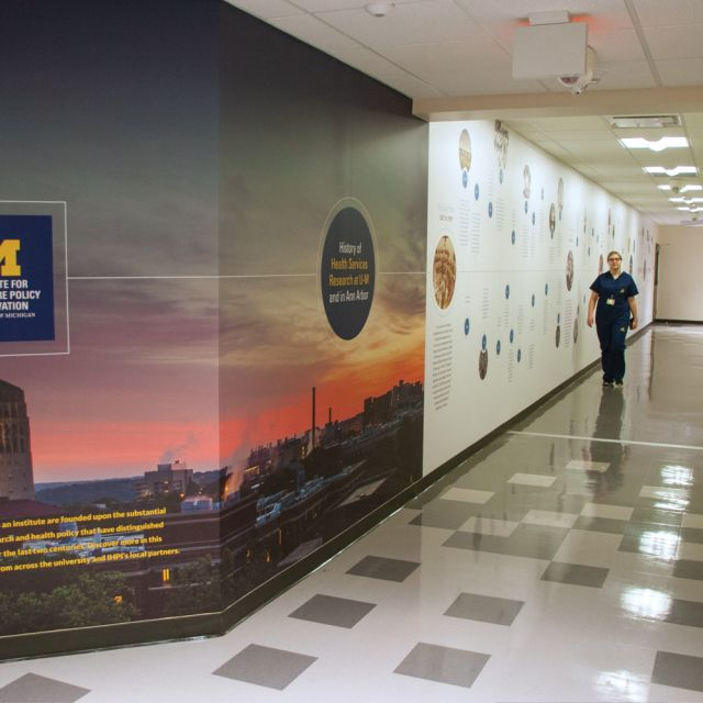 IHPI Timeline Wall View